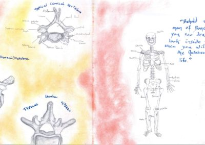 A student's main lesson book showing skeletal anatomy of a human drawn in beautiful detail with a thoughtful quote to accompany the drawings.